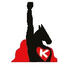 Akcja Konin logo